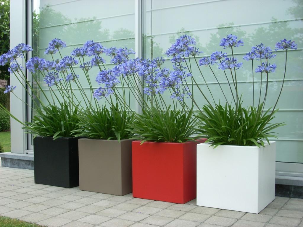 Grote Potplanten Voor Buiten.Tuin Sfeer Zorgt Voor Het Totaalonderhoud Van Tuinen Tuin En Sfeer