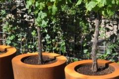 cortenstaal conische plantenbakken 2 (gr)