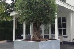 gegalvaniseerde-plantenbak-vadim